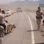Update: Ranch Riot: Feds Assault Bundy Ranch Protesters With Tasers And K9 Dogs!
