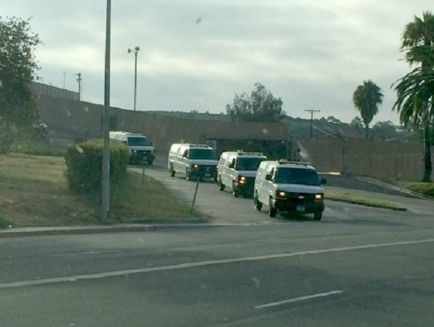 FEDS TRANSPORTING ILLEGALS IN VANS TO ELUDE PUBLIC!