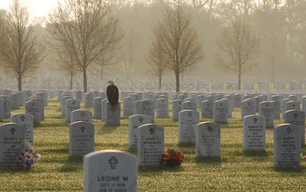 This Photo Of A Bald Eagle Perched On A Soldier's Tombstone Is Going Viral!