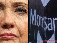 Hillary Clinton… Monsanto's Next Poster Puppet (Video)