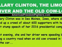 Hillary Clinton, The Limo Driver And The Old Cow… This Is HILARIOUS!