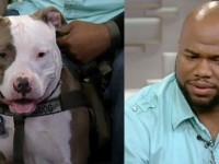 OUTRAGEOUS: Purple Heart Veteran With PTSD Denied Bus Ride… Over His Service Dog! (Video)