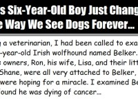 Young Boy Changes How We All Think About Dogs… This Is A MUST See!