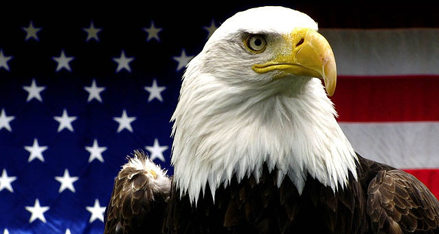 Move On Over Bald Eagle, Obama's Going To Make THIS Beast The National Symbol…
