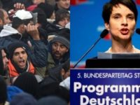 """German Politician Makes BOMBSHELL Announcement- """"Citizens Need To…"""""""