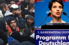 "German Politician Makes BOMBSHELL Announcement- ""Citizens Need To…"""