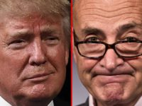 Chuck Schumer Spots Someone 'Familiar' In High End NY Restaurant, Patrons STUNNED At What Happens Next