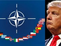 JUST IN: Trump Makes MAJOR NATO Announcement- It's Totally Turning Heads…