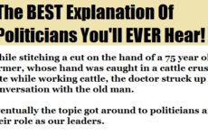 The BEST Explanation Of Politicians You'll EVER Hear!
