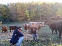 Government Attacks Small Family Farm In Schenectady County New York!
