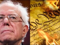 Bernie Sanders Just Called For Total Gun Confiscation If Not Used For THIS