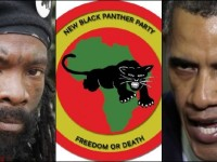 Liberals LOVE The Black Panthers, They're Overlooking One HUGE Detail