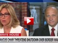 WATCH: GOP Congressman Comes Up With GENIUS Plan To Fund Border Wall… LIVE On CNN