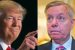 BOOM! President Trump Just ENDED Lindsey Graham's Career FOR GOOD… HE'S DONE!